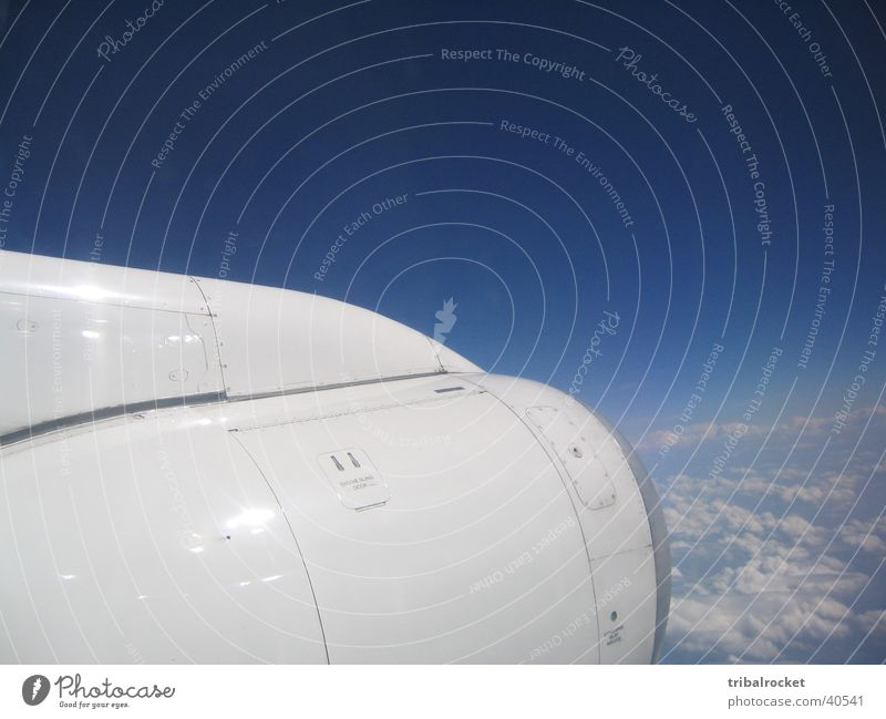 Flight003 weiß Sonne Luftverkehr Blauer Himmel Triebwerke über den Wolken