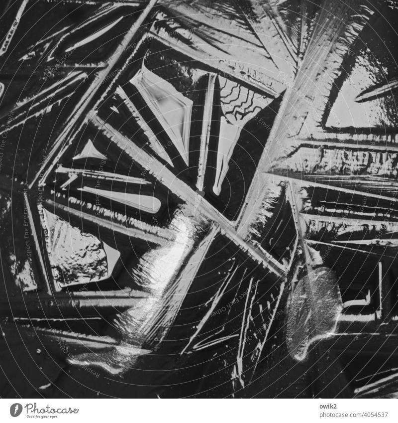 Duldungsstarre Eis gefroren kalt Winter Frost Detailaufnahme Muster abstrakt Strukturen & Formen Menschenleer Gebilde vereist bizarr erstarrt Linien unten
