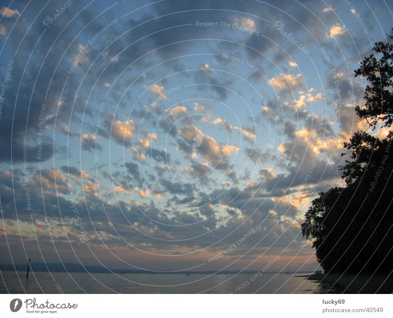Abendwolken Wasser Himmel blau Wolken