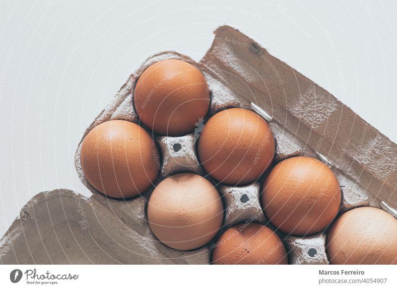 Hühnereier in einer Pappschachtel auf weißem Hintergrund Menschengruppe Pute Salmonellen Lager Eierkarton Ansicht von oben Essen zubereiten Verpackung ungekocht
