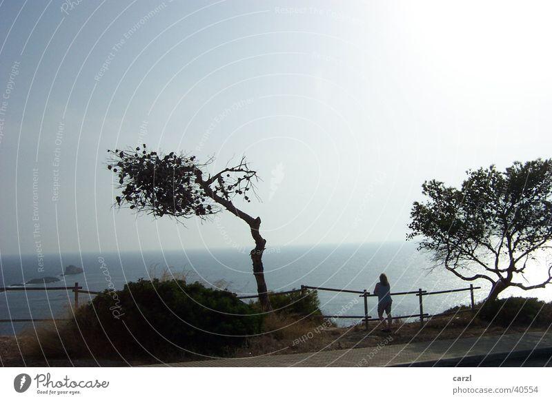 Nachmittag auf den Balearen Europa Mallorca