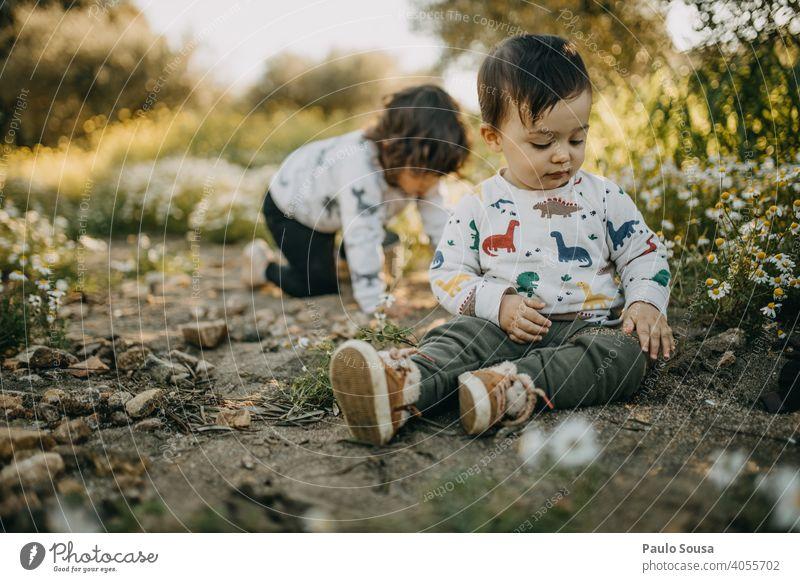 Bruder und Schwester spielen im Freien Frühling Frühlingsgefühle Frühlingsblume Wiese Blumenwiese Geschwister Familie & Verwandtschaft authentisch Kind Kindheit
