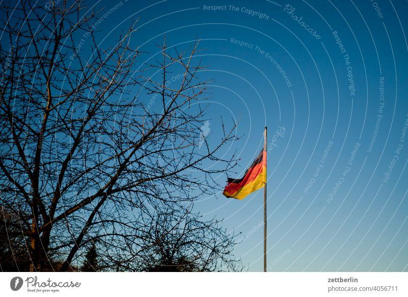 Wehende Deutschlandfahne abend ast baum feierabend ferien froschperspektive frühjahr frühling frühlingserwachen garten himmel kleingarten kleingartenkolonie