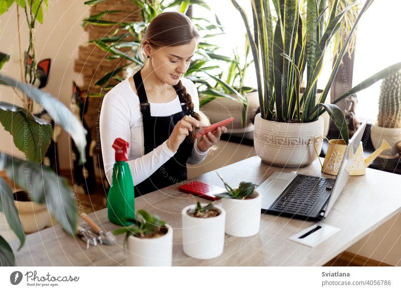 Eine Blumenverkäuferin nimmt mit ihrem Telefon in einem Blumenladen Online-Bestellungen entgegen. Laptop Blumenhändler Werkstatt jung Frau benutzend Porträt