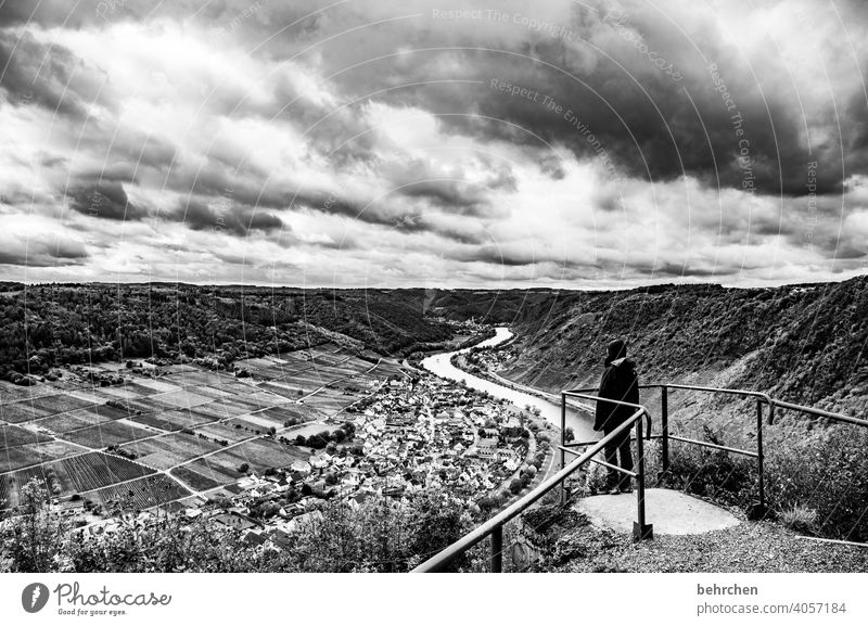 moseldramatik weite Dorf Stadt Weinberg herbstlich Jahreszeiten Herbst Regen Sohn Kindheit Wanderer Hunsrück Moseltal Mosel (Weinbaugebiet) Flussufer