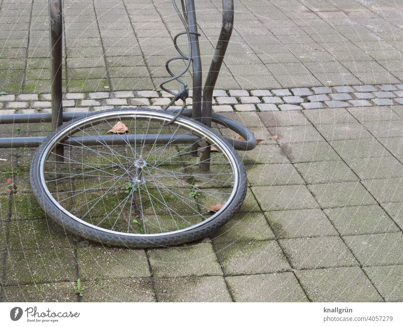 Was vom Fahrrad übrig blieb... Fahrradreifen Fahrradständer angekettet Fahrradschloss Außenaufnahme Menschenleer Tag Rad Metall Reifen Verkehrsmittel Speichen