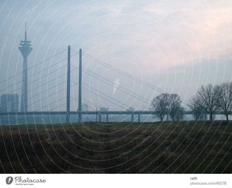 Rheinschleier Nebel Rhein