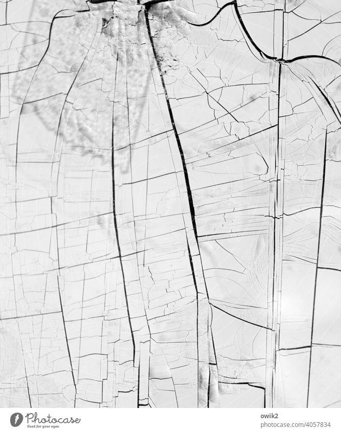 Oberflächlich komplex unklar bizarr nah klein Gedeckte Farben Detailaufnahme Makroaufnahme abstrakt Menschenleer Strukturen & Formen Muster Nahaufnahme