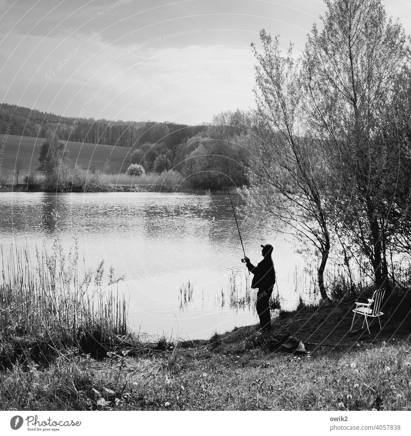 Angebissen Seeufer Sträucher Baum Schönes Wetter Wasser Landschaft Mensch Erwachsene 30-45 Jahre maskulin Natur Umwelt Pflanze Himmel Bewegung Angler