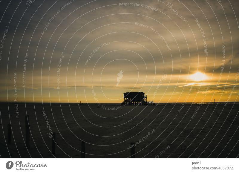 Pfahlhaus am Nordsee-Strand bei tiefstehender Sonne und Schleierwolken am Himmel Holzhaus Nordseeküste Sankt Peter Ording St. Peter-Ording Strandspaziergang