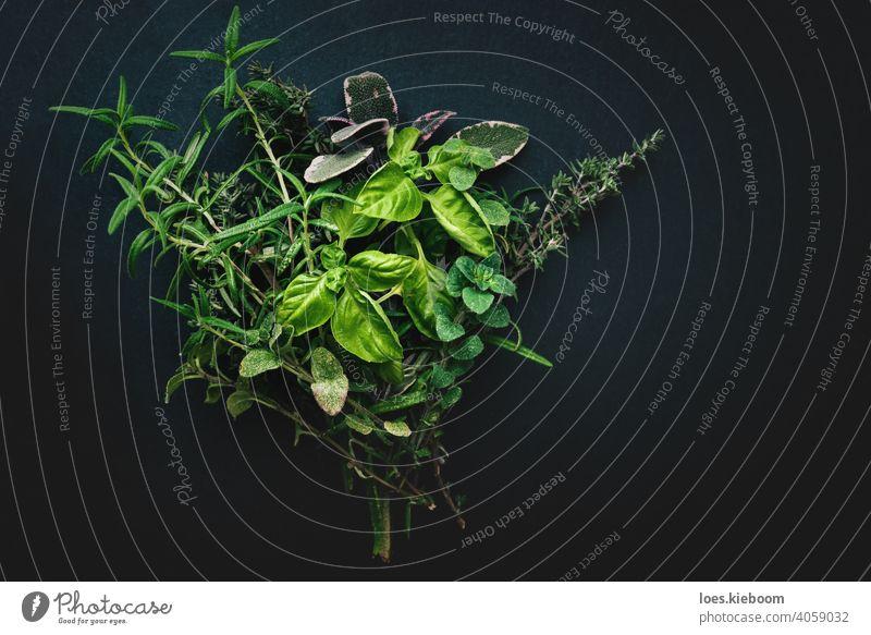 Modern gestylte Bündel von mediterranen Kräutern zum Kochen auf schwarzem Hintergrund Küchenkräuter Rosmarin Basilikum Oregano Thymian Salbei Essen zubereiten