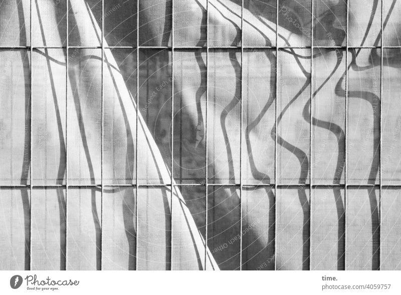Geschichten vom Zaun (92) zaun bauzaun Baustelle plane bauplane Abdeckung sichtschutz sicherheit metall gitter metallgitter kunststoff sonnig sonnenlicht