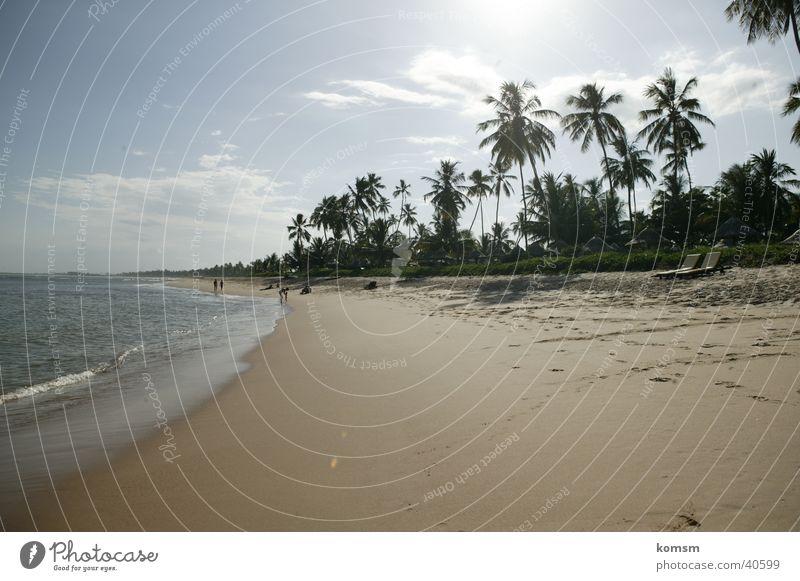 Strand Brasilien 01 Wasser Himmel Sonne Meer grün blau Wolken Wärme Sand Wellen Physik Palme Brandung