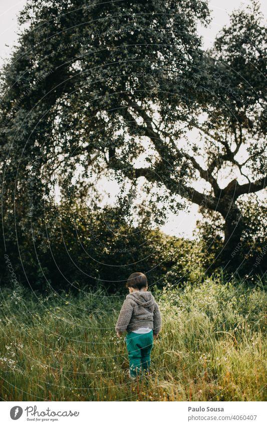 Rückansicht Kind auf Blumenwiese 1-3 Jahre Kaukasier erkunden Junge Natur natürlich authentisch Wiese Außenaufnahme Mensch Tag Kleinkind Spielen Freude Leben