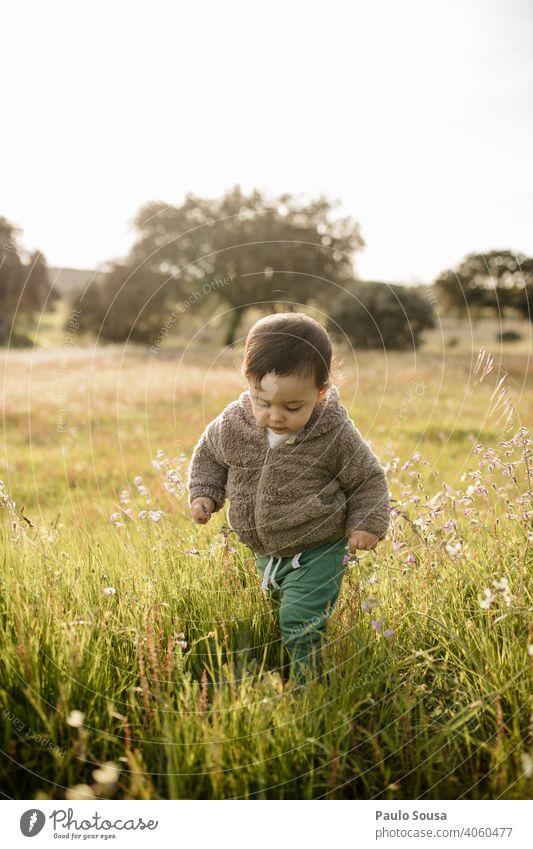 Kind geht durch Blumenwiese Kaukasier 1-3 Jahre authentisch Natur natürlich Umwelt Frühling Frühlingsgefühle Frühlingsblume erkunden mehrfarbig Blüte Wiese