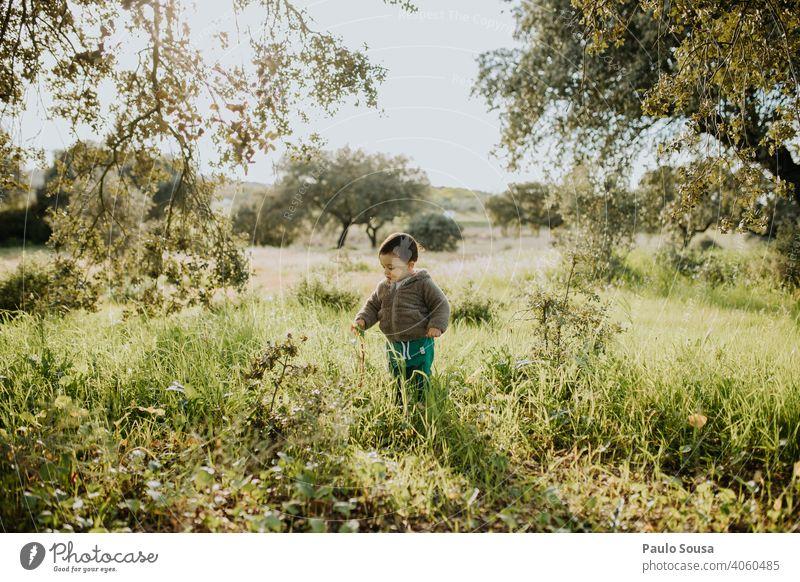 Kind pflückt Frühlingsblumen erkunden 1-3 Jahre Kaukasier Farbfoto Lifestyle Kindheit Tag Natur Mensch Außenaufnahme Freude authentisch Spielen natürlich
