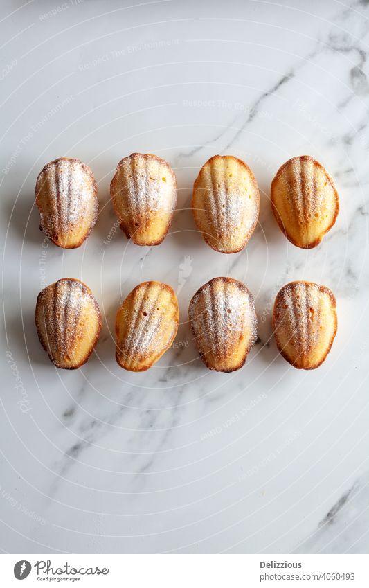 Nahaufnahme von oben von acht hausgemachten Madeleine-Kuchen auf einem weißen Marmor-Hintergrund, mit Kopierraum backen Backwaren Bäckerei braun Butter