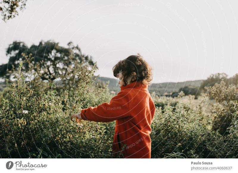 Seitenansicht von Küken beim Pflücken von Frühlingsblumen Frühlingsgefühle Frühblüher Kind Kindheit Kinderspiel authentisch Garten Blühend Natur Farbfoto