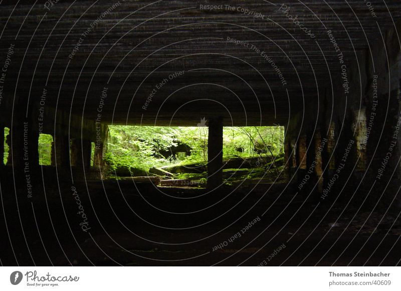 Wolfschanze historisch Bunker Weltkrieg Nationalsozialismus Krieg 2. Weltkrieg