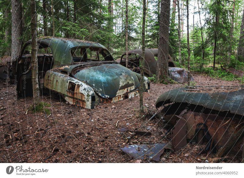 Deplatzierte Autowracks im Wald bei Båstnäs in Schweden auto alt wald illegal entsorgung oldtimer vintage antik patina müll schrott schrottplatz abfall umwelt