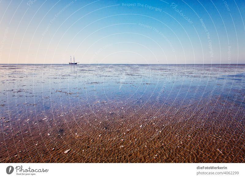 Segelschiff im Wattenmeer beim Trockenfallen Draußen Europa Gewässer Landschaft Madraque Meer Natur Niederlande Ort Reisen Sand Schiff See Segeln Strand Wasser