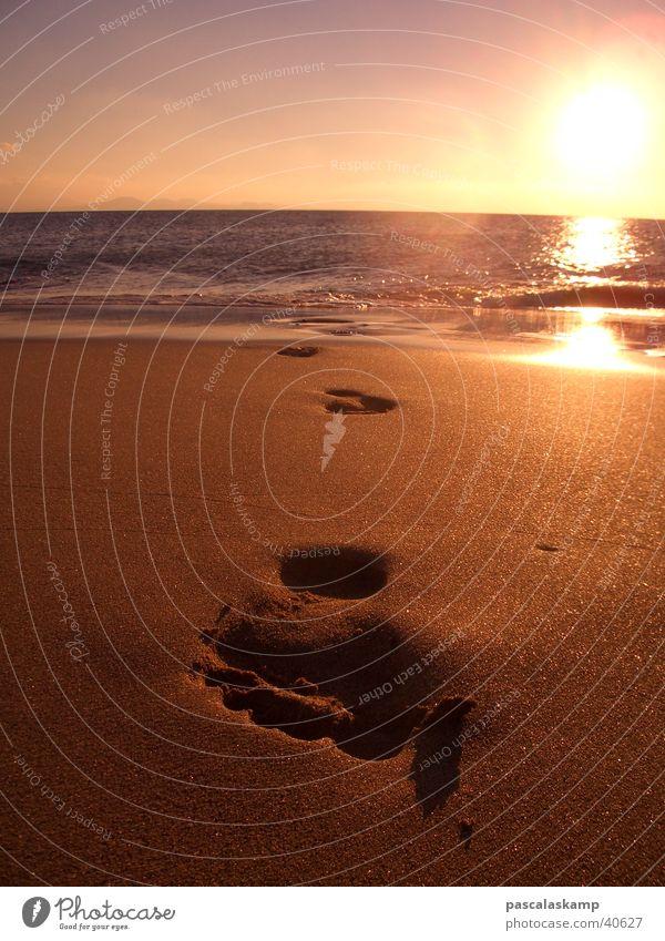 Beachlife Strand Europa Spanien Fußspur Spuren Lanzarote
