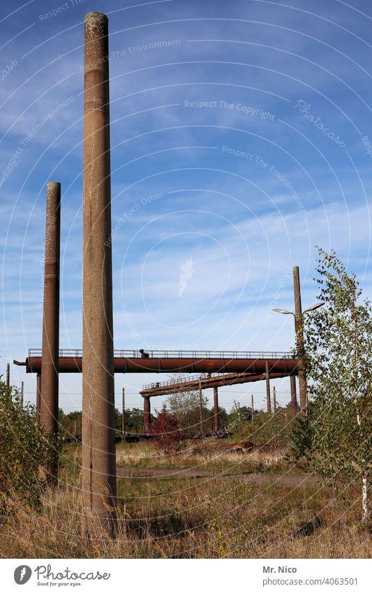 Schornsteinsammlung Industrie Rost Metall alt Stahl Kamin Blauer Himmel Fabrik Rohrleitung Stahlwerk Sinterei Industrieanlage Brachland Pflanzen Umwelt