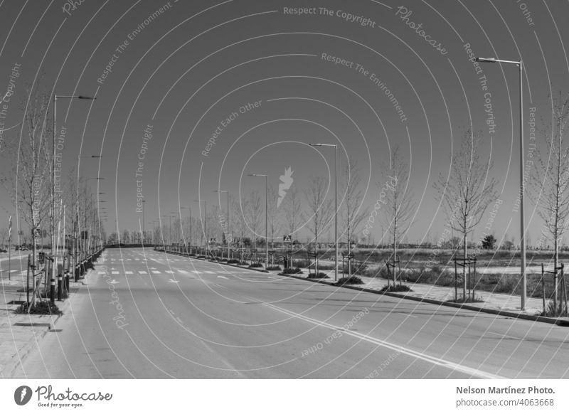 Graustufenaufnahme einer leeren Straße mit Lichtmasten und kahlen Bäumen sehr wenige schwarz auf weiß kahle Bäume COVID19 traurig Himmel Frühling nostalgisch