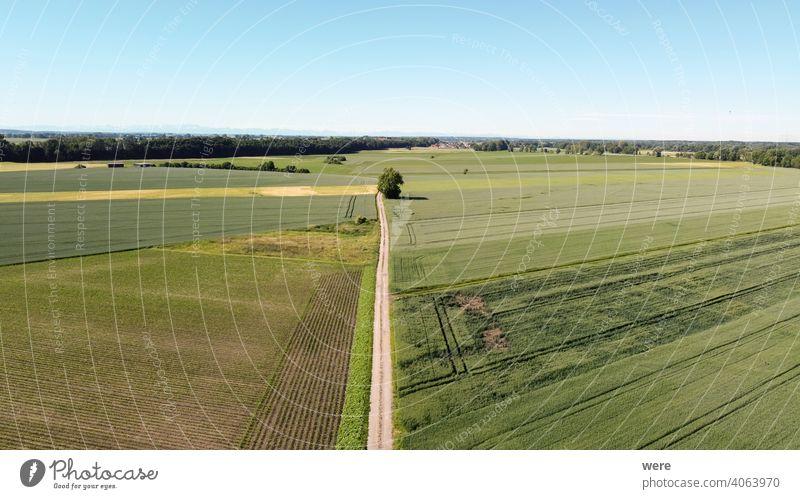 Blick aus der Luft über landwirtschaftlich genutzte Flächen auf die Alpen Bereich Flug Ansicht Luftaufnahme landwirtschaftliche Fläche