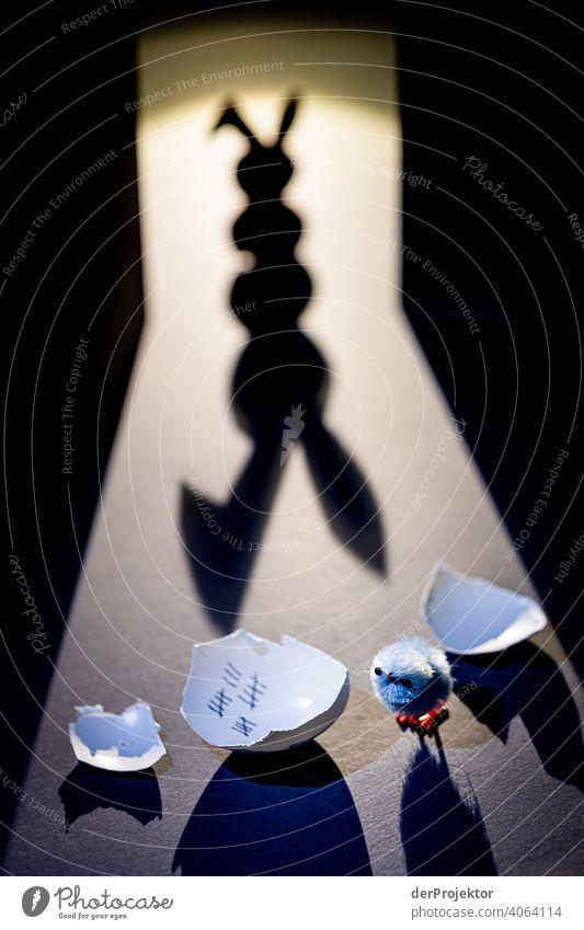 Osterhase aus Karton von hinten angeleuchtet mit langem Schatten mit ausgebrochenem Küken Osterhasen Hase & Kaninchen fake künstlich Künstlerisch ostereiersuche