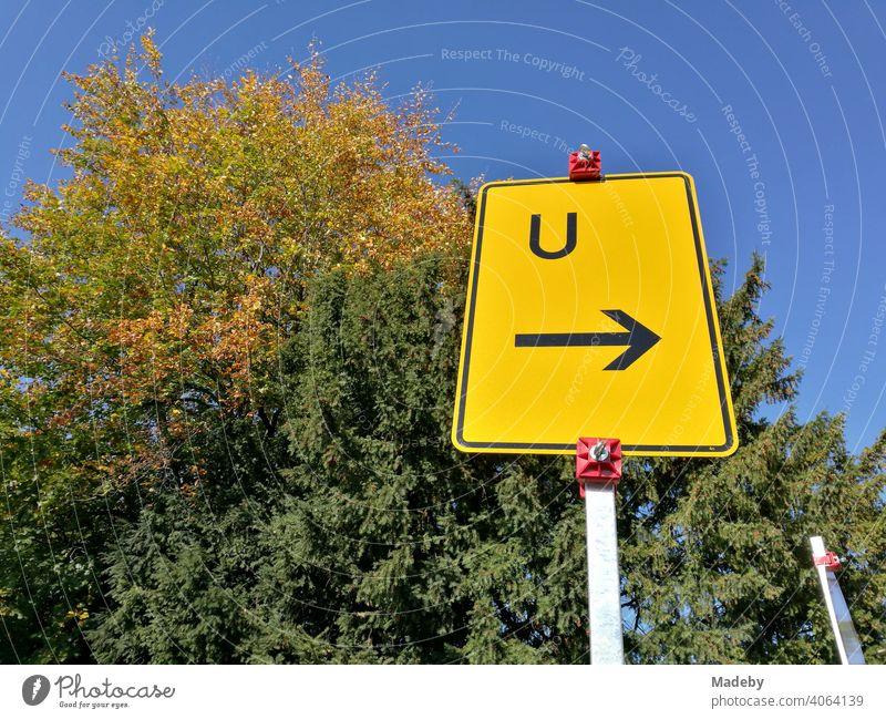 Gelbes Verkehrszeichen mit dem Hinweis auf eine Umleitung vor großen alten Bäumen und blauem Himmel im Herbst bei Sonnenschein in der Hansestadt Lemgo bei Detmold in Ostwestfalen-Lippe