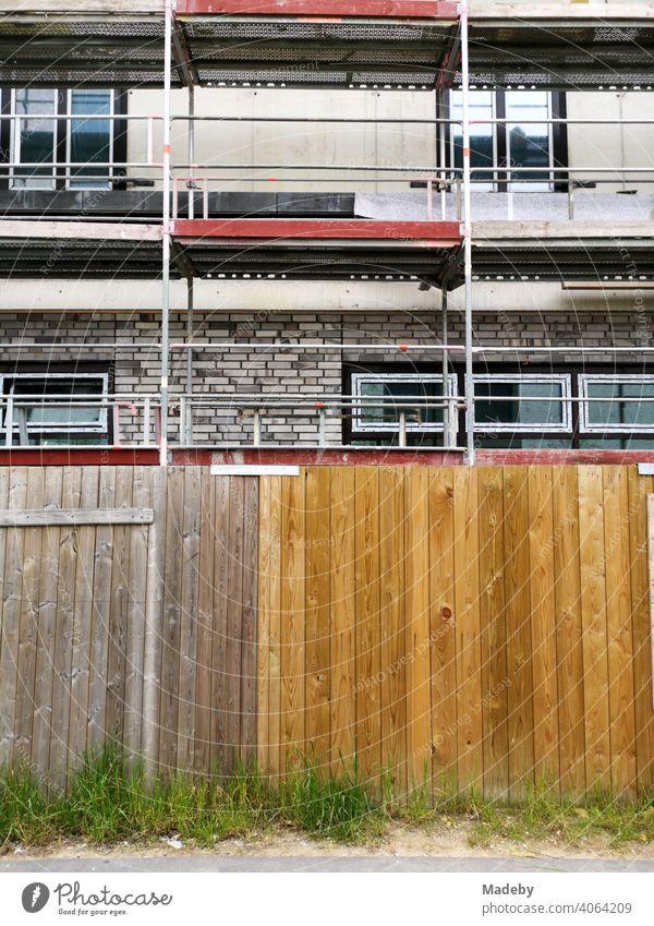 Unkraut vor einem Bauzaun mit Holzbrettern vor einem Neubau mit Baugerüst am Hafen in Offenbach am Main in HessenUrbanitätUrbanes Leben Baustelle Holzzaun