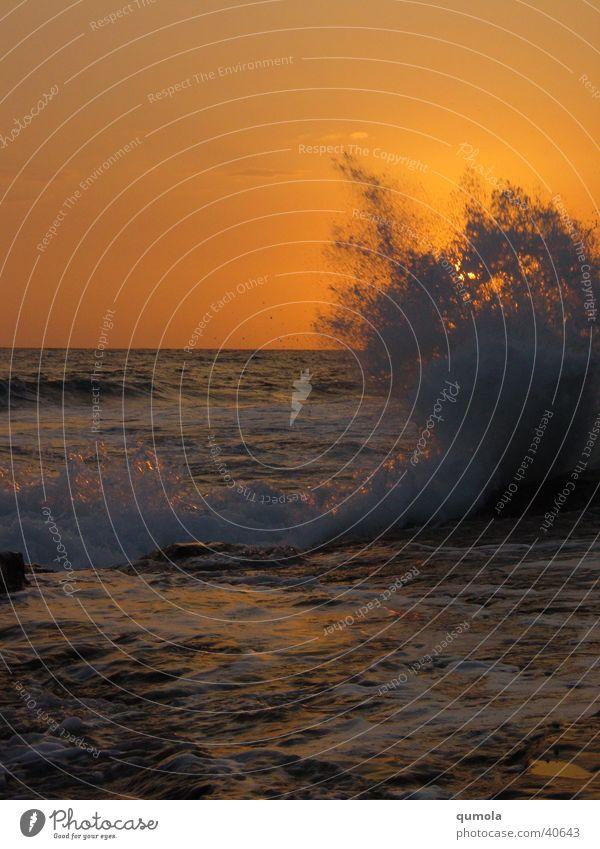Brandung im Sonnenuntergang Natur Wasser Sonne Meer Strand Stimmung Kraft Wellen Küste groß Kraft Geschwindigkeit Macht Romantik Unendlichkeit Sehnsucht