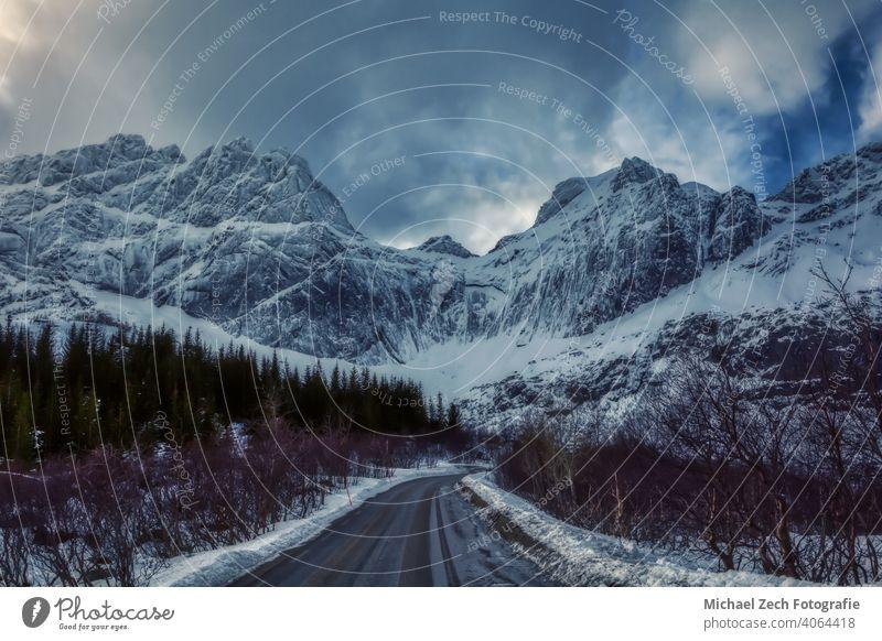 Blick von der Nusfjordveien Straße zum Bjorntinden Gletscher in Norwegen Länder Orte Reisen Berge u. Gebirge Schnee Skandinavien Landschaft Winter Natur