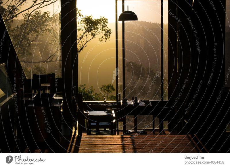 Die letzte Stunde vor dem Sonnenuntergang. Ein wunderschönes Licht. Die Zweige draußen  und die Bohlen Bretter des Fußbodens erscheinen wie verzaubert . Jetzt ist die Zeit des Dinner  gekommen.