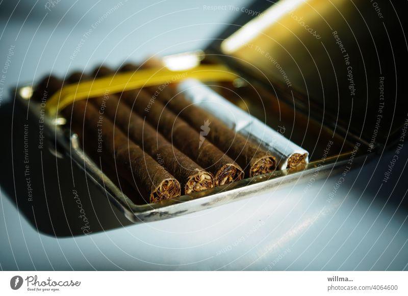 Indigene Minderheit Zigaretten Zigarillos Zigarettenetui Tabakwaren Nikotin Randgruppe Raucher ungesund Rauchen Sucht Abhängigkeit gesundheitsschädlich