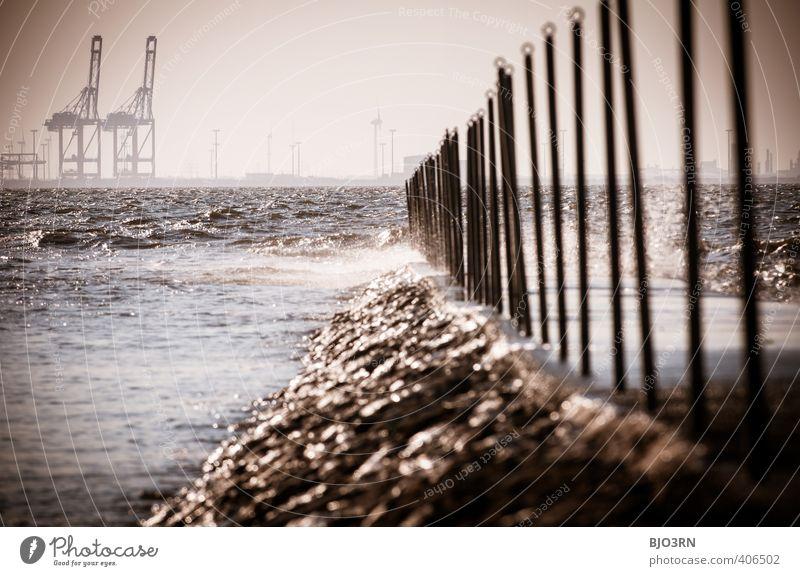Kräne | Duo Maschine Schifffahrt Container Ferne Kran Küste Fortschritt Zukunft Industrie Konkurrenz Wandel & Veränderung Arbeit & Erwerbstätigkeit Arbeitsplatz