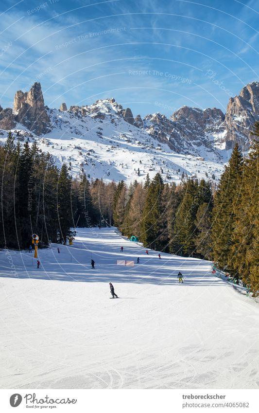 blaue, rote und schwarze Skipisten in Vigo di Fassa, italienische Dolomiten in Südtirol mit wunderschönen Pisten und unter blauem Himmel und vor den typischen schroffen Felsformationen