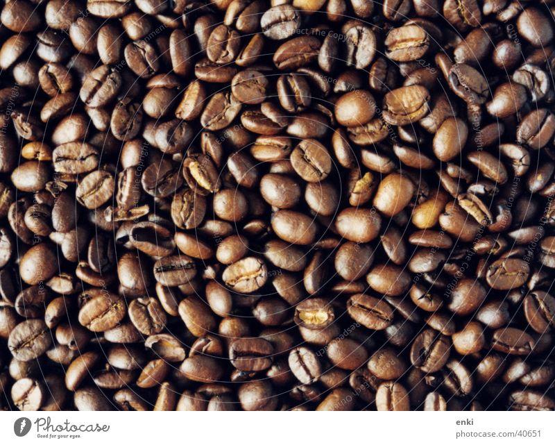 kaffebohnen Dorf Bohnen Feinschmecker Ernährung geröstet coffein Detailaufnahme
