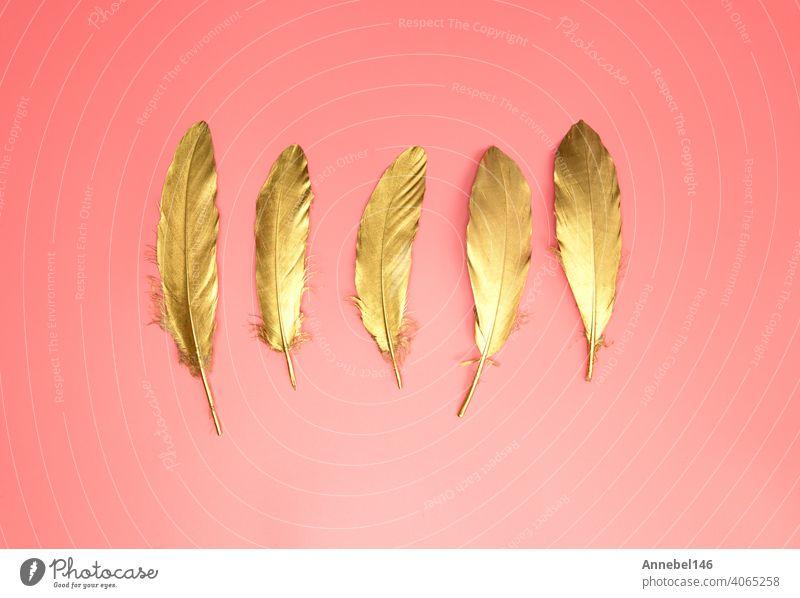 Gold glänzende Federn in einer Reihe auf pastellrosa Hintergrund, Flat lay, retro, modern, bunt stilvolle Konzept Draufsicht. Design-Element Tapete kopieren Raum