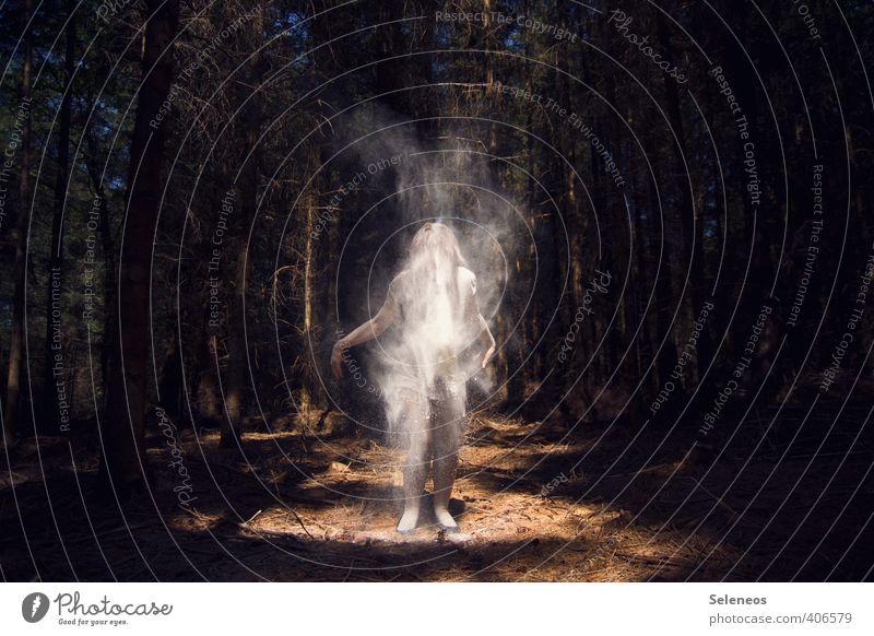 die Geister die ich rief Mensch 1 Umwelt Natur Sonne Sonnenlicht Pflanze Baum Nadelbaum Wald dreckig dunkel gruselig Angst Mehl Geister u. Gespenster