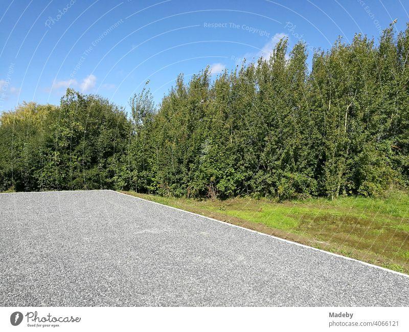 Ebener grauer Schotterparkplatz vor grünen Büschen und Sträuchern und blauem Himmel bei Sonnenschein in Oelde in Westfalen im Münsterland Parkplatz Parken Kies