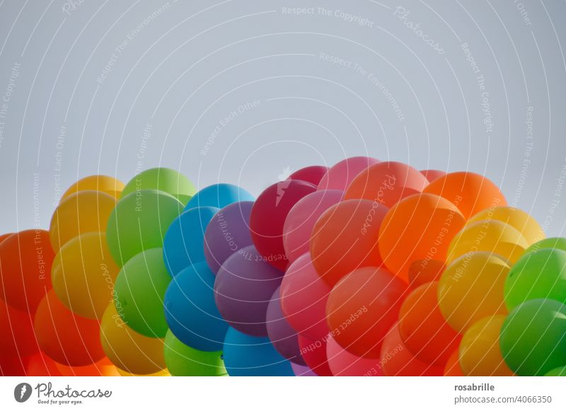 aufgeblasen | viele bunte Luftballons Ballon Ballons Geburtstag Fest Feier Party Event feiern froh fröhlich Spaß Helium Gas Dekoration fliegen schweben Sommer