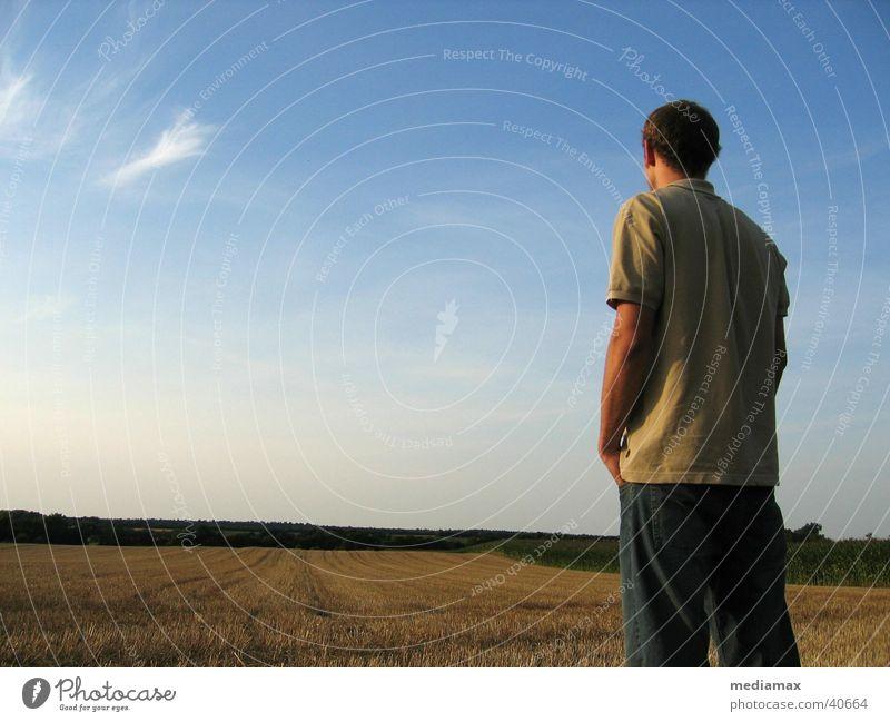 Blick nach vorn Mann Natur Himmel Erholung Freiheit Feld Hoffnung Zukunft Aussicht Erwartung Abenddämmerung