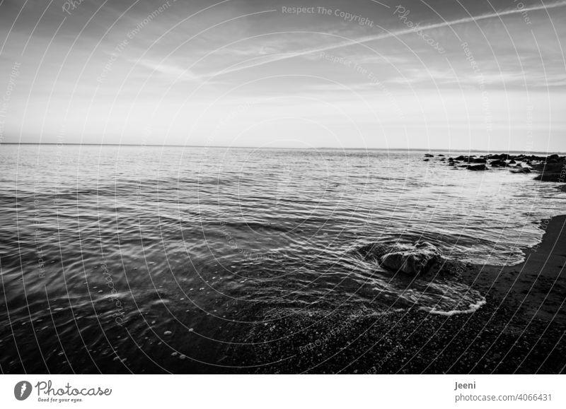 Weiter Blick über die Ostsee ostseeküste Steilküste Küste Küstenlinie weiter Blick Ferne Fernweh Himmel Wolkenloser Himmel zart Meer Wasser Landschaft Strömung