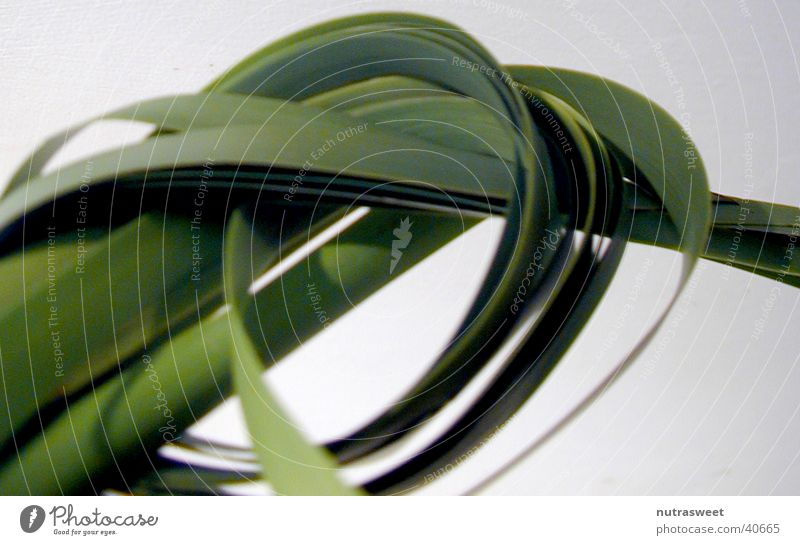 knoten Pflanze Nudeln Knoten Bandnudeln