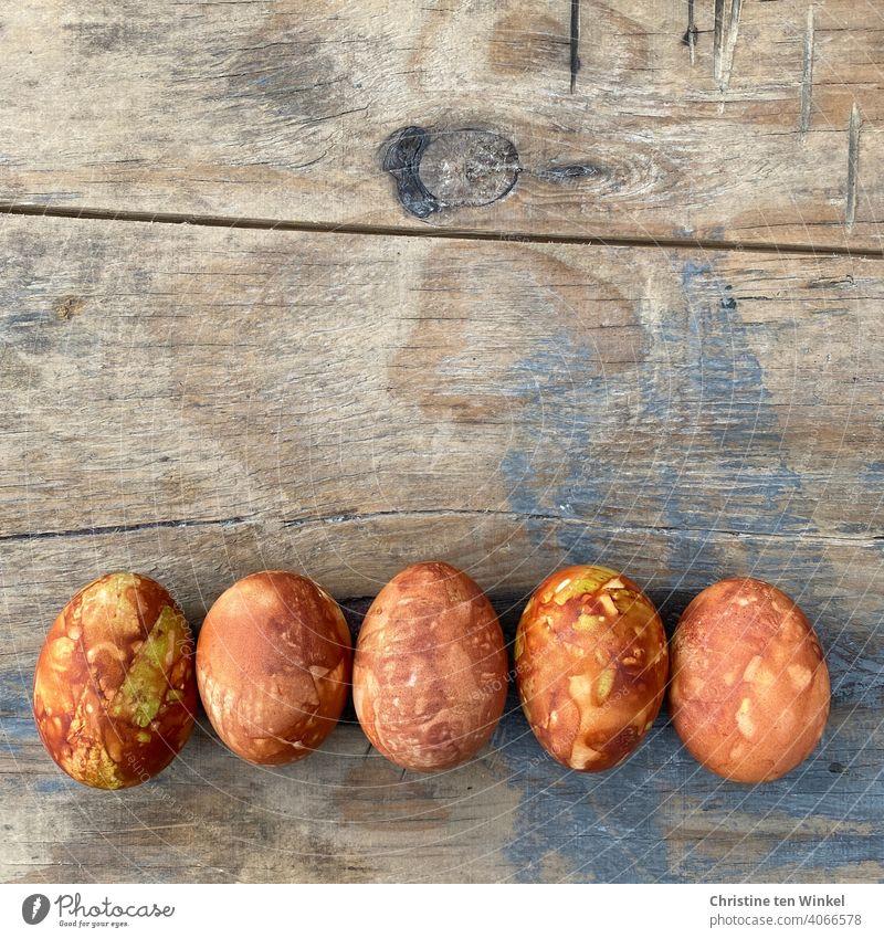 Fünf Ostereier, mit Zwiebelschalen gefärbt, liegen nebeneinander auf einem alten verwitterten und mit grau blauer Farbe angemalten Holzbrett gefärbte Eier