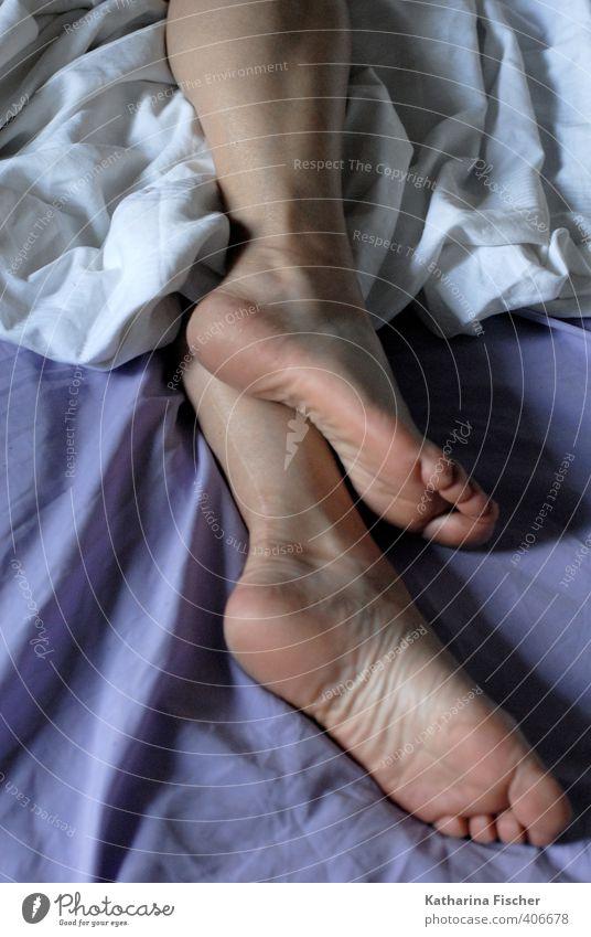 #406678 Beine Fuß liegen schlafen violett weiß ruhig Erholung Fußsohle Bettlaken Bettwäsche Barfuß bequem Bettdecke Geborgenheit Schlafzimmer Müdigkeit Farbfoto
