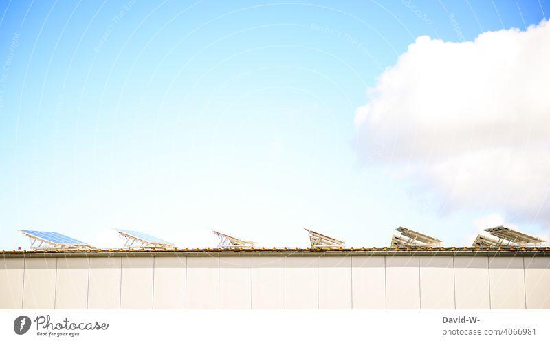 Solarenergie - Solarzellen werden von der Sonne angestrahlt Photovoltaik Sonnenenergie Sonnenlicht nachhaltig innovativ umweltfreundlich Energiegewinnung