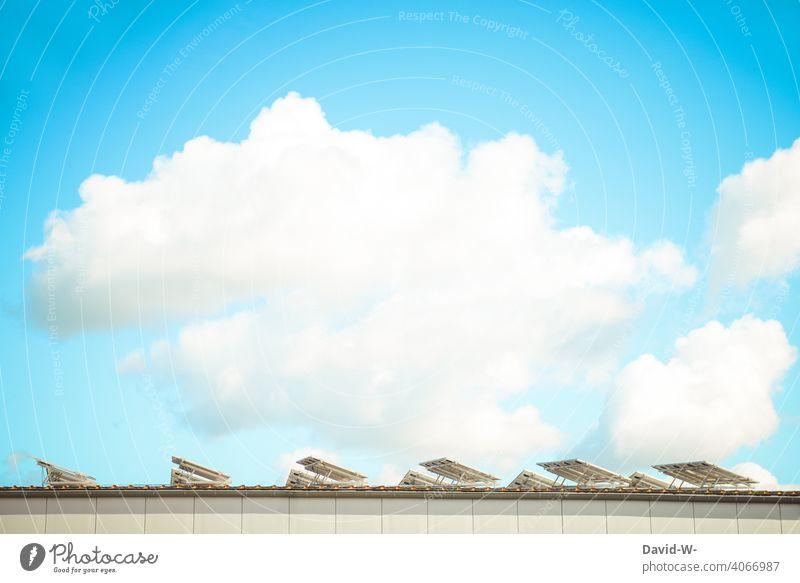 Solarzellen werden bei schönem Wetter von der Sonne angestrahlt Photovoltaik Solarenergie innovativ Solarmodul Sonnenschein Umwelt Energiewirtschaft